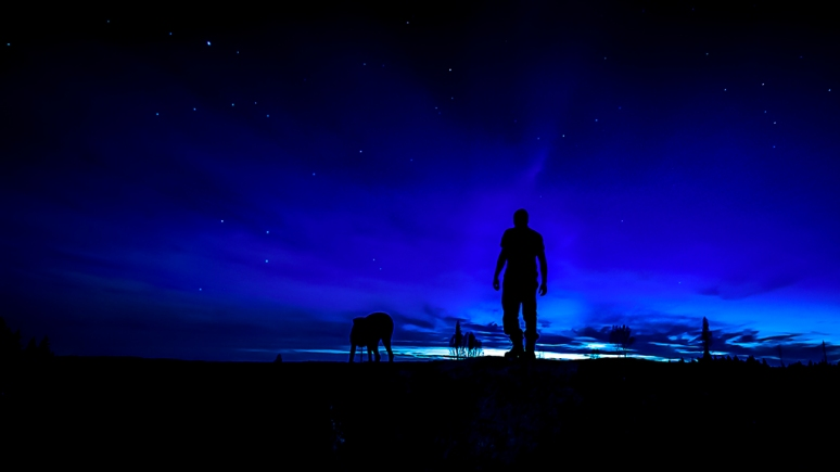 Man and animal in universe